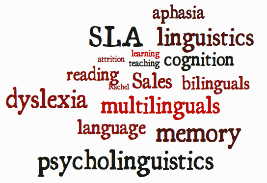 essay on psycholinguistics Psycholinguistics studies the relationship between language and mind it studies how are language and speech acquired, produced, comprehended, and lost.